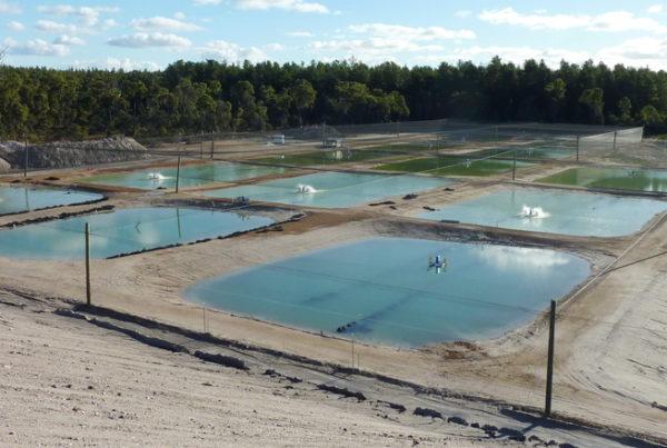 Coal mine pit lake aquaculture